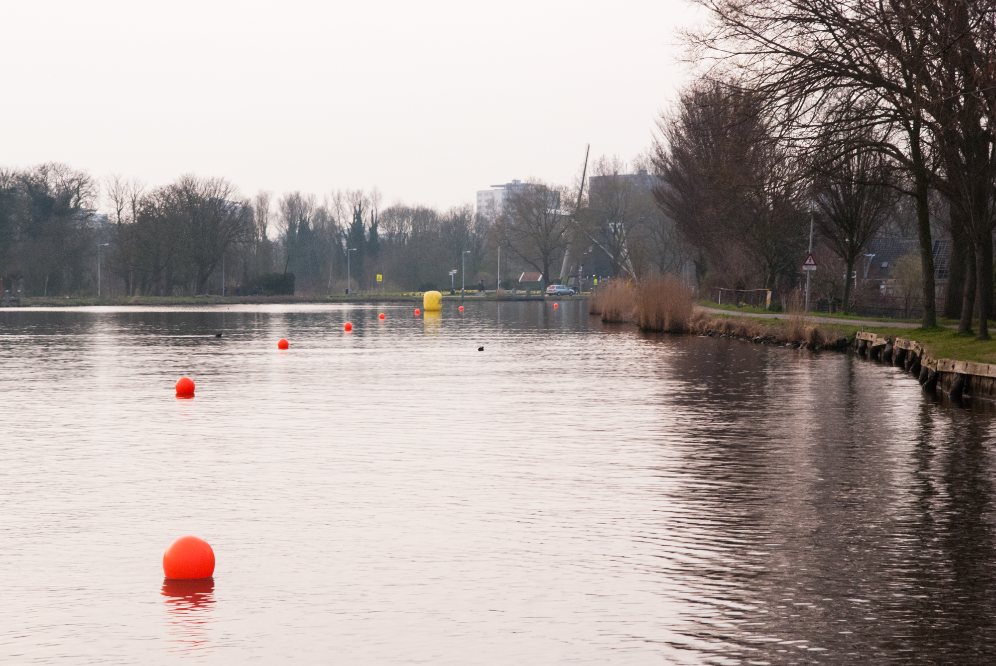 MerijnSoeters-lr-9484
